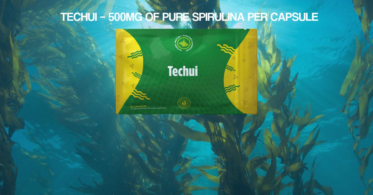 Techui Feature Image